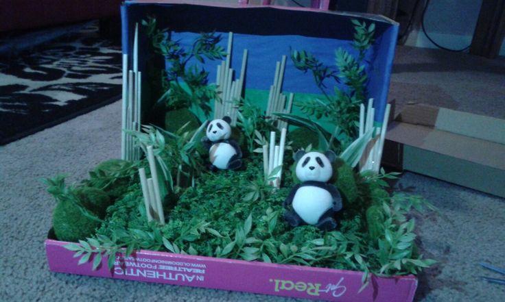 "Panda habitat diorama. Shoe box. Grass and ""bamboo"" sticks bought from Michael's."