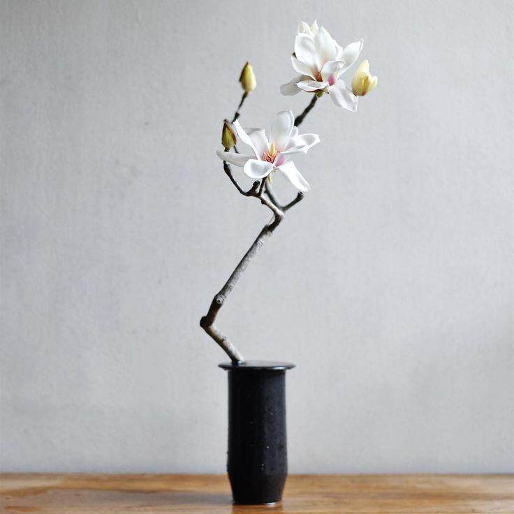 17 個讚,1 則留言 - Instagram 上的 watarai toru - Tumbler&FLOWERS(@watara_ikebana):「 白木蓮咲きました!… 」