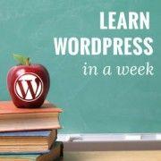 Zeer handige tips & tricks voor beginnende bloggers in Wordpress! (een must-see als je met bloggen begint of er na 1 jaar nog geen bal van snapt ;-P  ).  How to Learn WordPress for Free in a Week (or Less)