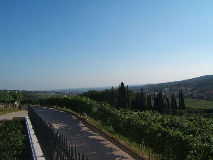 Would you like to sleep in a Valpolicella winery? http://www.amaronevalpolicella.org/vogadori-family/bed-and-breakfast-negrar
