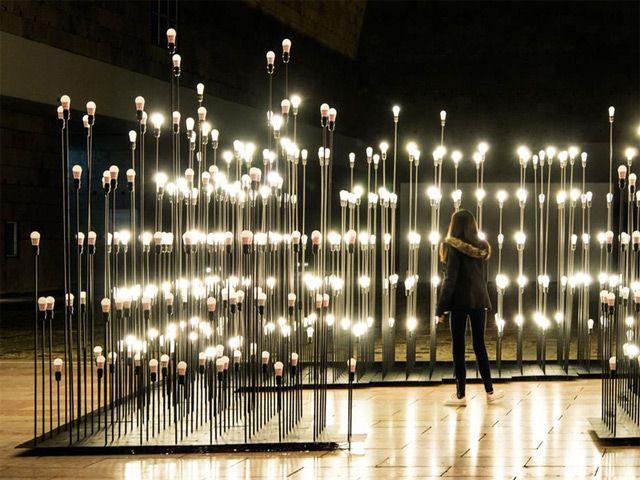 Landscaping Lights Installation : Lightbulb landscape in portugal light installation advertising