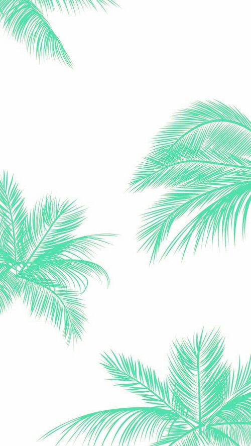 Teal Palm Leaves wallpaper