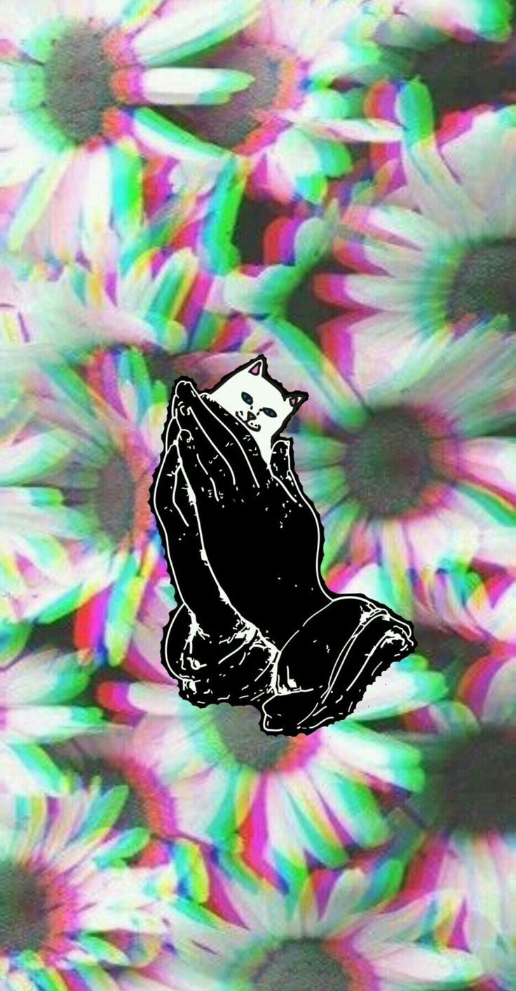 Ripndip Iphone Wallpaper Ripndip Middle Finger Cat
