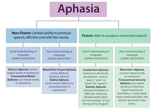 Understanding Aphasia in Stroke Survivors.... Seeing this makes me wish I was working in a hospital