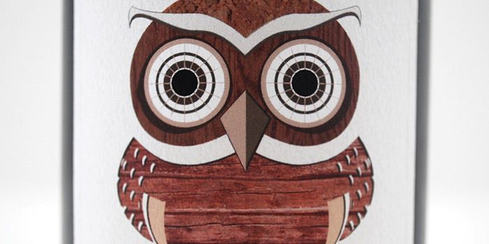 Owl illustration: Design Inspiration, Maegan Brown, Package Design, Birds Owls, Owls Owls, Owls Art, Art Owls