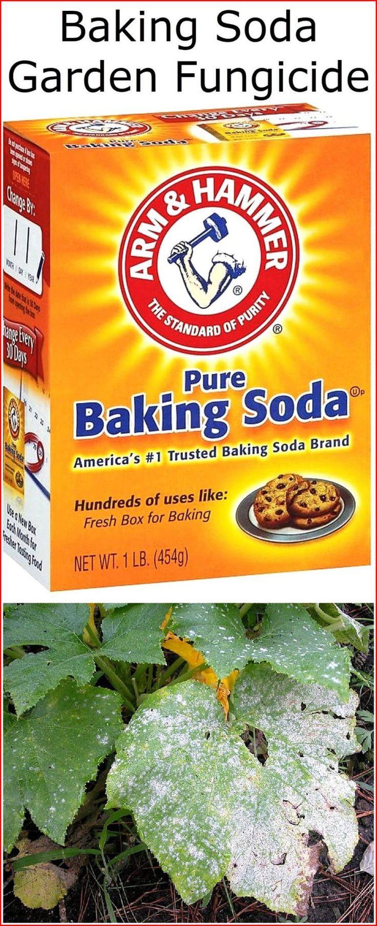 Baking Soda Garden Fungicide Powdery Mildew Fungicide 400 x 300