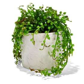 Marble Effect Pot with Plant
