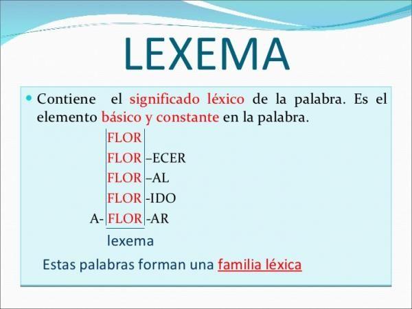 Qué Es Un Lexema Definición Y Ejemplos Libros De Comunicacion Libro De Lenguaje Aprender Español