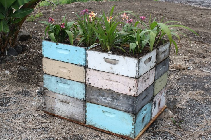 old bee boxes as planters!! love love love this idea!!