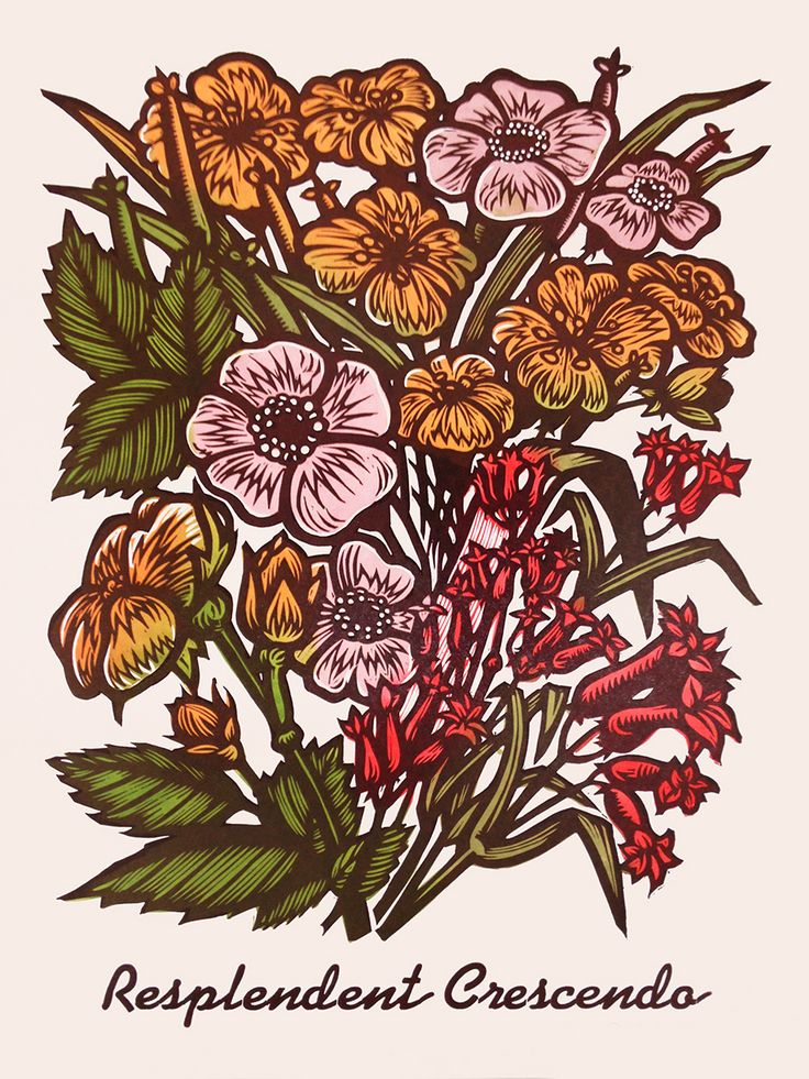 "Martin Mazorra's Language of Flowers, Bouquet Series,Color Woodcut and Letterpress print, 24"" x 18"", on French's 100 lb. Cover, Insulation Pink. Handcut, Handprinted with moveable type. Signed.  Unframed. Edition of 20."