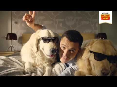 Detrás de un verdadero Dog Lover siempre hay un Master Dog - Alexis Sánchez - YouTube