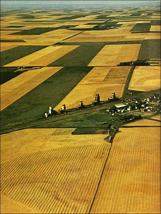 Saskatchewan Prairie, Canada - Linda