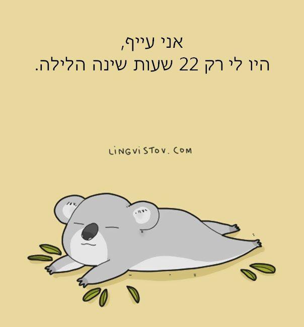 מחשבות של חיות 15