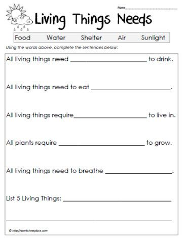, Grade 1 Living Things, 2Nd Grade Science Worksheets, Worksheets ...