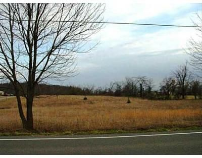 LOCATED IMMEDIATELY EAST OF THE COPORATION OF MIDDLEBURG, THIS 3.190 ACRE LOT HAS BEEN SURVEYED BUT NOT PERC TESTED. ELECTRIC IS AVAILABLE TO THE LOT. PROPERTY HAS SOME TREE LINE ON THE WEST SIDE AND SOME WOODS TO REAR. GREAT LOCATION IN BEN LOGAN SCHOOL DISTRICT. APPROX. 188' FRONTAGE X 740' DEEP, THIS IS A WONDERFUL PIECE OF LAND FOR YOU FIRST HOME! CALL TODAY...NEAR HONDA PLANTS AND CONVENIENT TO US 33 MLS# 353987 STATE ROUTE 287, Middleburg, OH 43336 - Middleburg Real Estate…