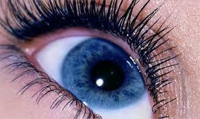 Resultado de imagen para ojos azul oscuro