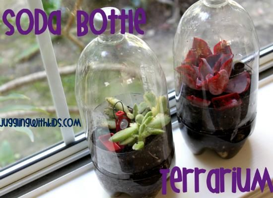 From the recycling bin to the windowsill, a recycled two-liter bottle can be transformed into a miniature rain forest with a layer of gravel, charcoal, soil, and small tropical plants. As seen on Juggling with Kids, this recycling craft makes a great rainy day project for both kids and kids at heart.