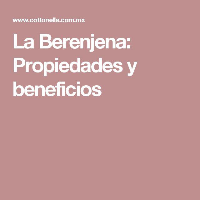 La Berenjena: Propiedades y beneficios