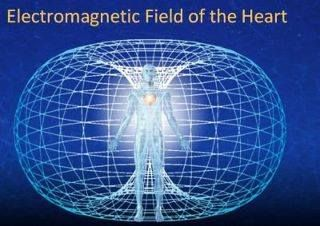 Torus - The Electromagnetic Field Of The Heart  The #torus field is the energy field around the #heart when coherent with the frequencies of the holy spirit of love-in-action (violet aura), which is a golden ratio algorithm of the 3/4 rhythm of the heart. The auric torus field around the body is centered in the heart, the strongest electromagnetic field in the body. See More http://sixsensespsychicreadings.com/blog/torus-the-electromagnetic-field-of-the-heart