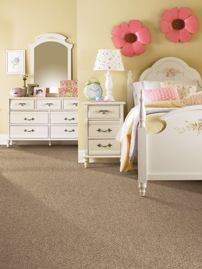 a neutral carpet provides a blank slate for any room prosourcefloors