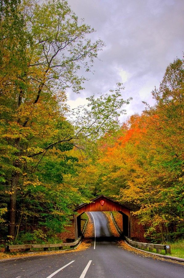 ~~Gateway to Nature's Beauty | autumn leaf peeping, Pierce Stocking Scenic Drive, Michigan by R_sid~~