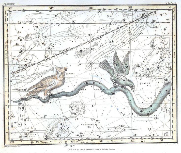 Astronomy - Celestial Atlas - Jamieson 1822 - Plate 27
