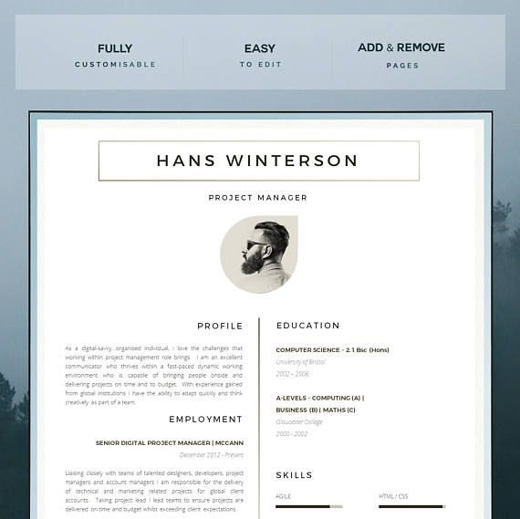 The 25+ best Professional cv format ideas on Pinterest - professional cv template