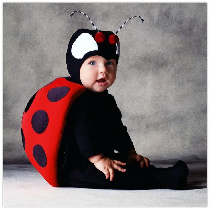 Tom Arma Lady Bug - Family Friendly Costumes