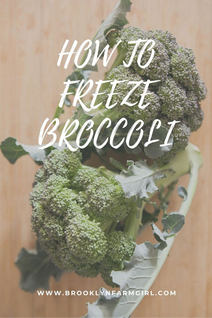 How to freeze broccoli for longterm use broccoli