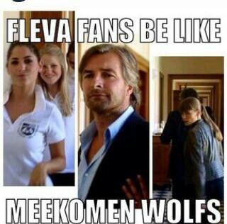 Wolfs!!!