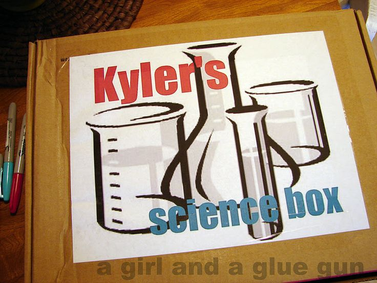 the science box: - A girl and a glue gun
