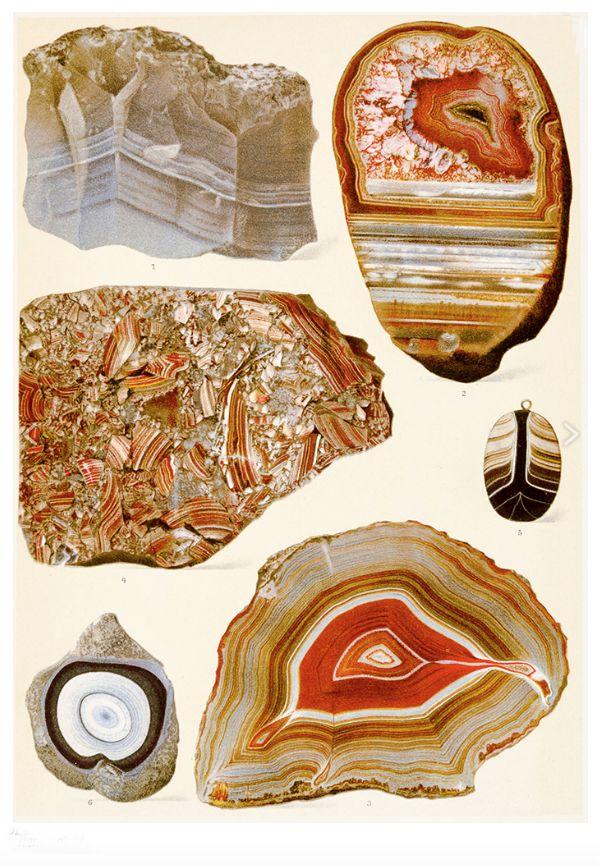 Mineralogie – Brauns, Reinhard Das Mineralreich. Stuttgart, Lehmann, 1903. 2