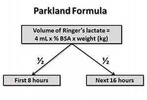 parkland formula - Bing images