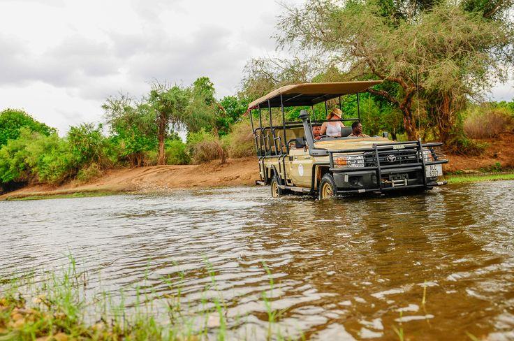 4 x 4 driving is all part of the adventure ! :) Come on Safari in Zambia at www.royalzambezilodge.com
