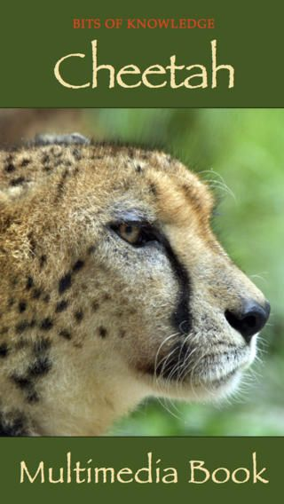 Cheetah Book - Enjoy this fascinating book on cheetah by WINKtoLEARN. It helps your child to appreciate the beauty and grace of this endangered animal through magnificent retina-quality photographs and explanatory video!
