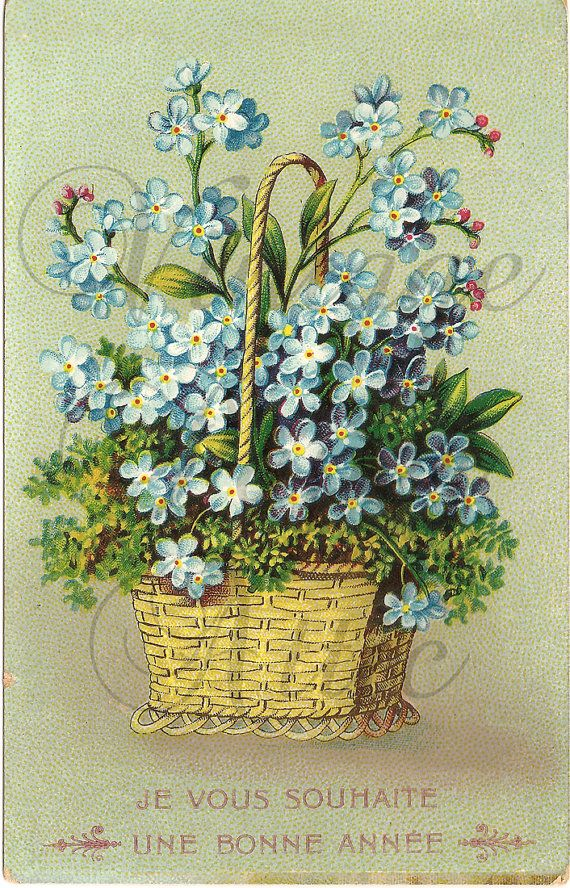 Antique French Postcard Chromolith Forget Me Nots Myosotis Flowers in Basket from Vintage Paper Attic