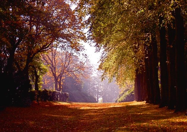 Autumn at Wentworth Castle Gardens by Peter Jacob. #Readerphotooftheweek