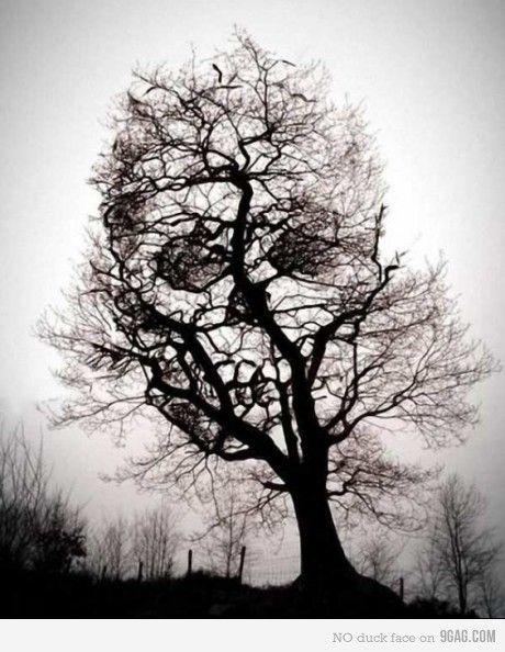 Death.Tattoo Ideas, Trees Art, Stuff, Awesome, Trees Tattoo, A Tattoo, Skull Trees, Cool Tattoo, Halloween