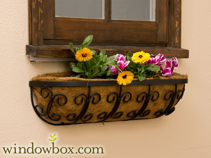 17 Best images about Window Boxes on Pinterest   Railing planters ...