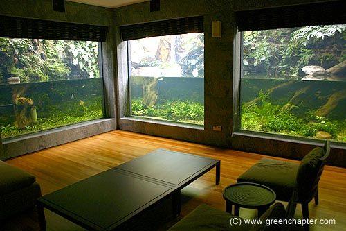16 besten paludarium bilder auf pinterest reptilien vivarium und g rten. Black Bedroom Furniture Sets. Home Design Ideas