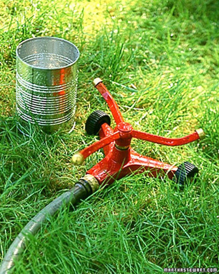 991 best Gardening Tips Ideas images on Pinterest Martha