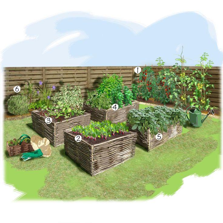 projet amnagement jardin potager au carr - Amenager Un Jardin Rectangulaire