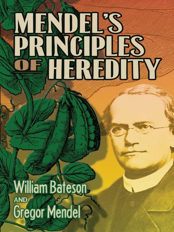 mendel biography cortal