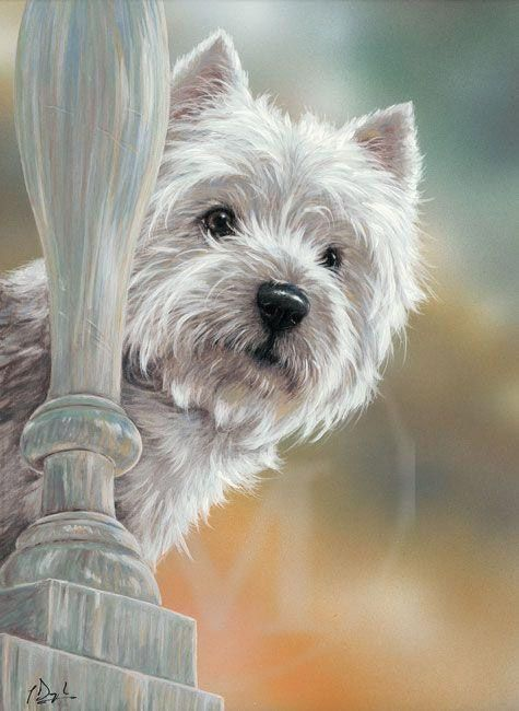 West Highland White Terrier Prints - English Limited Edition Dog Prints and Dog Art