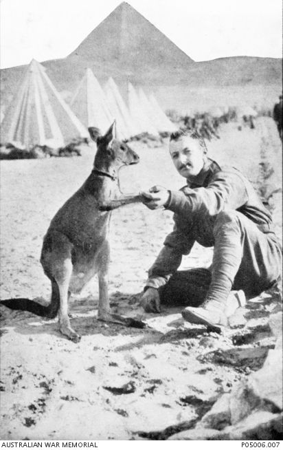 """'""""Shake!"""" The Mascot of an Australian Regiment on Egypt'. An Australian soldier with a kangaroo mascot at a camp near the pyramids."""