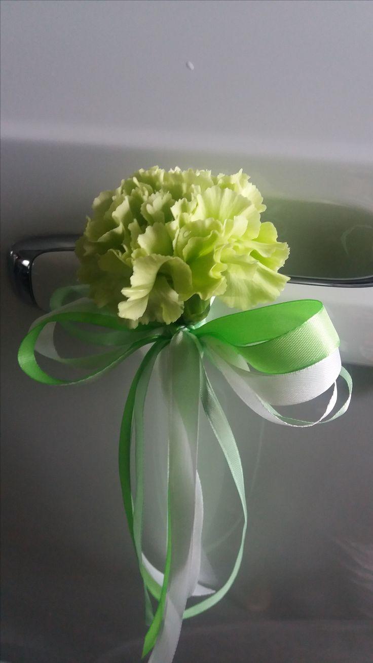 Na zielono :) Zielony rattan i goździk na białym tle...