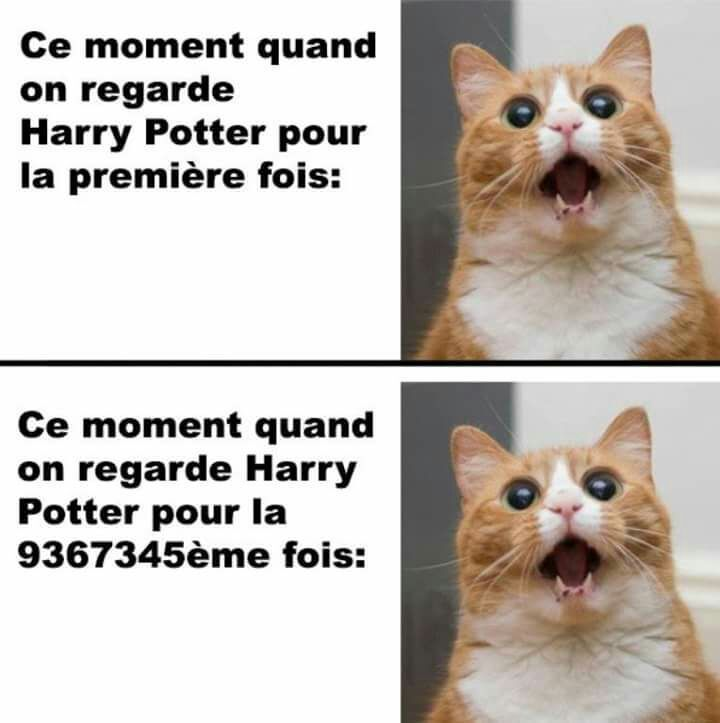 """I cant speak this language but I think its like """" Me when I readwatch Harry Potter the first time vs.the 9362728845. time"""