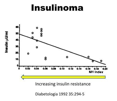 Hiperinsulinemia e resistência à insulina diabetes tipo 2 22 - Gestão Dietética Intensiva