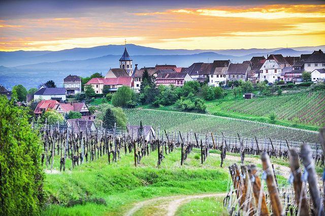 """Route du Vin, """"The Wine Road"""" (France)"""