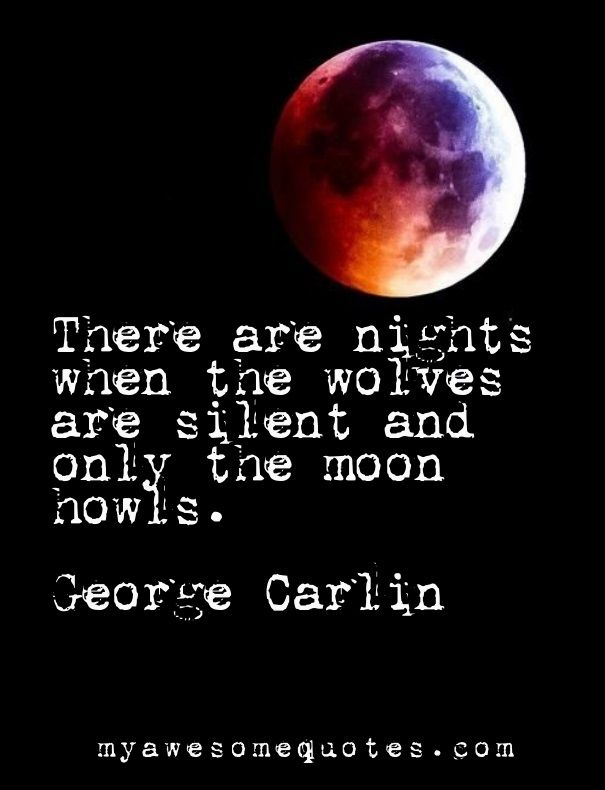 George Carlin Quote About The Night